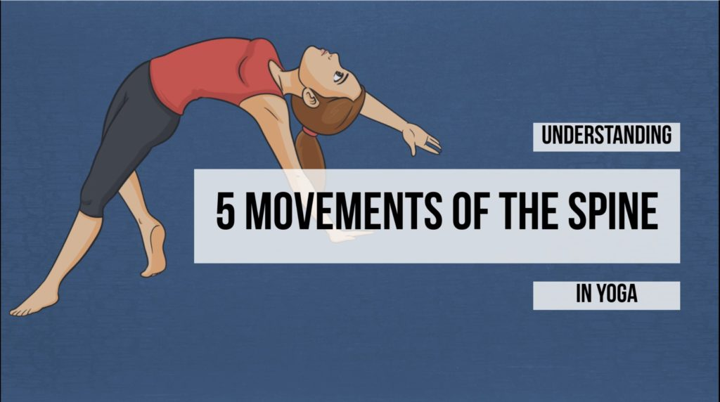 beinks video – 5 movements of the spine in yoga