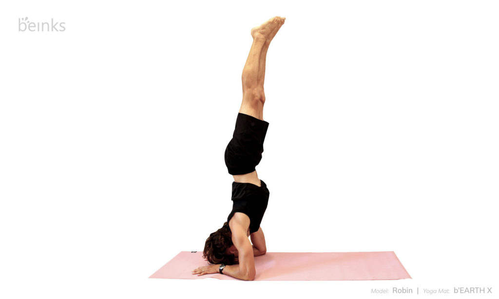 Robin - forearm balance front