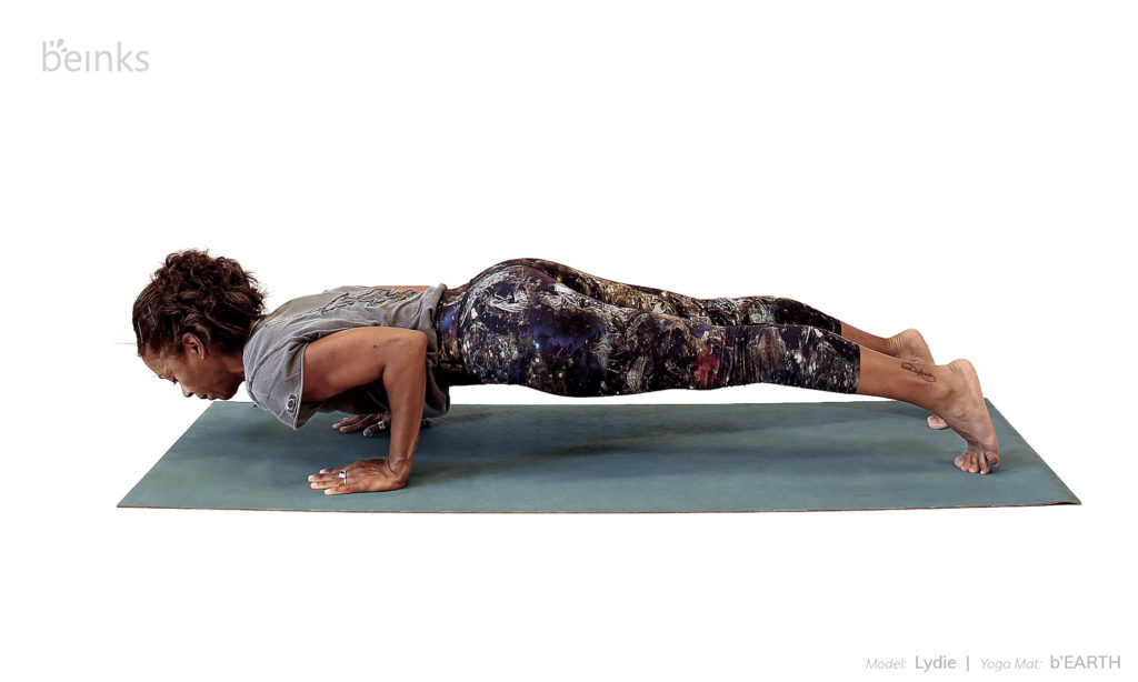 four limb staff chaturanga